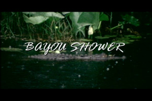 Bayou Shower